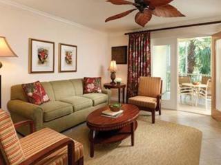 Luxury 2 Bed 2 bath at Sheraton Vistana Resort - Orlando vacation rentals