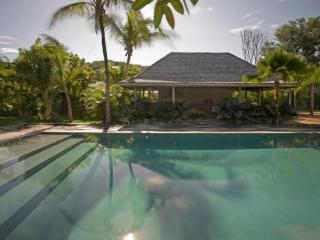 Luxury 5 bedroom St. Barts villa. Private, tropical and a short walk to the - Lorient vacation rentals