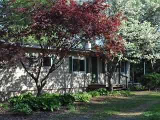 The Creek House - Penn State Football & More! - Petersburg vacation rentals