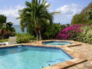4 bedroom Villa with Television in Mahoe Bay - Mahoe Bay vacation rentals