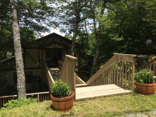 Skis, Pedals 'n Paws - Beech Mountain vacation rentals