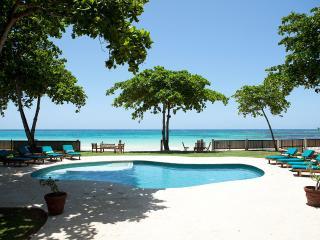 Perfect Villa with Hot Tub and DVD Player - Ocho Rios vacation rentals