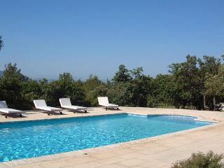 Spacious Villa with DVD Player and Fireplace - Cabrieres-d'Avignon vacation rentals