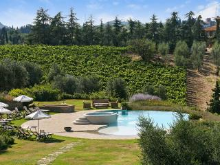 Beautiful Chianti Villa rental with Internet Access - Chianti vacation rentals