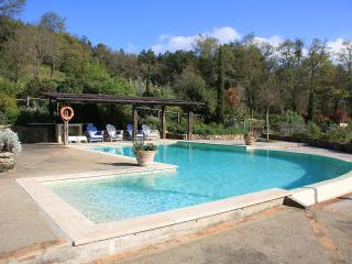 7 bedroom Villa with DVD Player in Tuscany - Tuscany vacation rentals