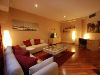 COZY APARTMENT PASEO DE GRACIA - Barcelona vacation rentals