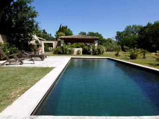 Lovely Villa with DVD Player and Fireplace - Saint-Remy-de-Provence vacation rentals