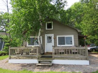 Bright Cottage with A/C and Deck in Alpena - Alpena vacation rentals