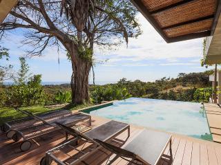 Tierra Three Bedroom Residence Villa, Sleeps 6 - Ostional vacation rentals