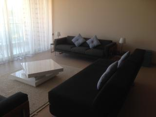 Spacious 3 Bed Penthouse - Albufeira vacation rentals