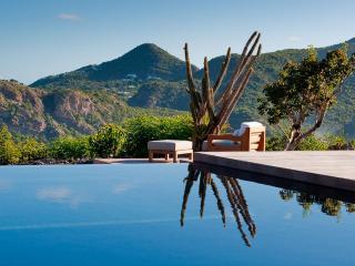 OSE - Villa Rose, Sleeps 2 - Marigot vacation rentals