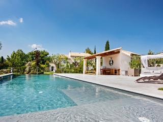 Mas Pascaline, Sleeps 14 - Saint-Remy-de-Provence vacation rentals