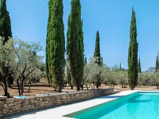 Gorgeous Villa with DVD Player and Fireplace - Saint-Remy-de-Provence vacation rentals