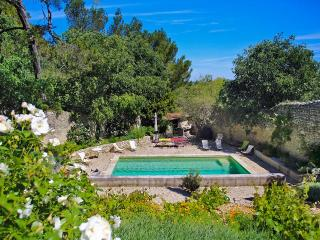 Le Viguier, Sleeps 12 - Avignon vacation rentals