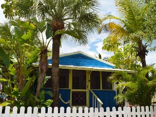 Blue Dolphin / Yellow Palm Cottage - Sarasota vacation rentals