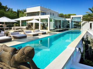 Villa By Lagoon, Sleeps 12 - San Jose vacation rentals