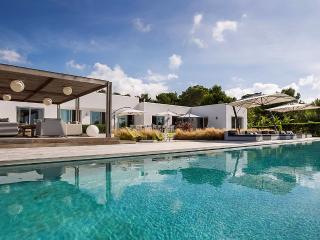 Villa Vida Conta, Sleeps 12 - San Jose vacation rentals