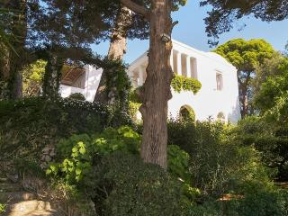 Villa Tiberio, Sleeps 10 - Capri vacation rentals