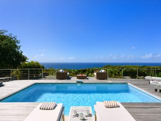 Cozy Villa with Hot Tub and DVD Player - Gustavia vacation rentals