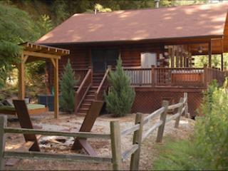 Dreamcatcher - Image 1 - Bryson City - rentals