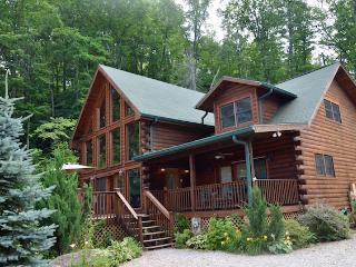2 bedroom House with Fireplace in Bryson City - Bryson City vacation rentals