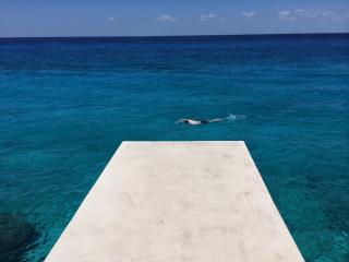 JUST RENOVATED! 3BR Condo, Right on the Sea, Miramar 302, Quiet North Coast Dr - Cozumel vacation rentals