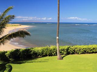 MENEHUNE SHORES, #218^ - Kihei vacation rentals