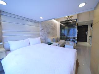 [612] Deluxe classic apartment - Taipei vacation rentals
