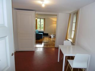 Appartement de charme Carouge - Carouge vacation rentals