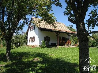Comfortable Farmhouse Barn with Internet Access and DVD Player - Kiskunfelegyhaza vacation rentals