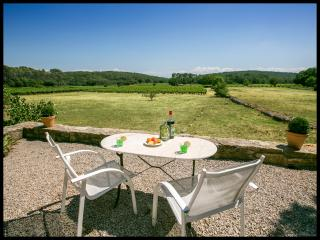Dream Villa with Pool, Fireplace, and is Pet-Friendly, Cotignac France - Cotignac vacation rentals