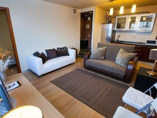 Cozy two-room apartment center (9) - Moscow vacation rentals