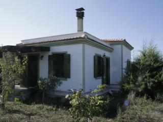 Tenedos/Bozcaada Cozy Small Home&Garden - Bozcaada vacation rentals