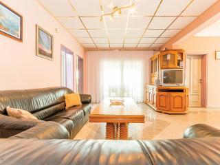 Apartmani Stojanovic Delux - Vir vacation rentals