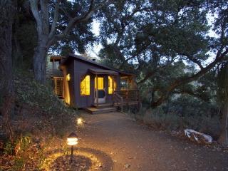 Big Sur Craftsman Cabin w/Sauna - Still accessible! - Big Sur vacation rentals