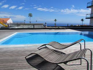 1 bedroom Apartment with Internet Access in Canico - Canico vacation rentals