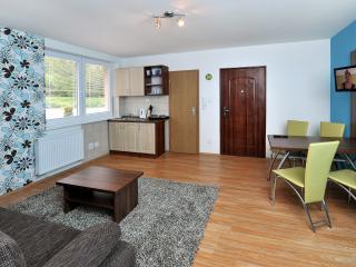 APLEND Vila Júlia  Apartment 3+2 Tatranská Lomnica - Tatranska Lomnica vacation rentals