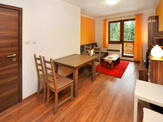 Apartments 4+1 Kamzik Donovaly - Donovaly vacation rentals