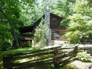 Near Boone/Hot Tub/WiFi/FP/Fishing/Hiking /Christmas Tree Pkg or Winter Rates - Boone vacation rentals