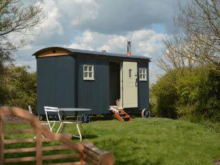Cobbe Place Farm Shepherds Hut - Lewes vacation rentals
