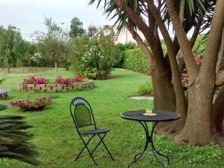Big house with amazing huge private garden - Pompeii vacation rentals