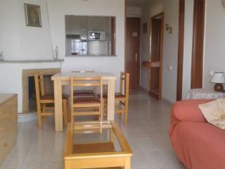 Costa Dorada La Pineda circa del mar - La Pineda vacation rentals