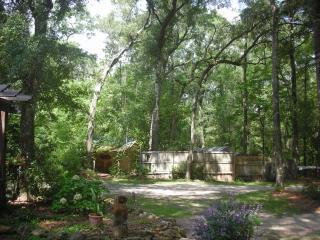 Rum Island Retreat - Santa Fe River - Fort White vacation rentals