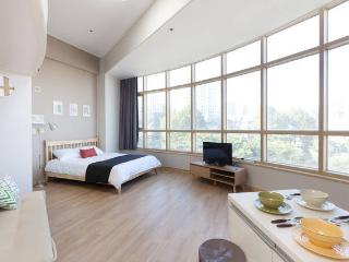 2 Big Lofts for Family and Friends near seoul STN. - Seoul vacation rentals