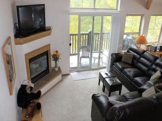 TLB8 Amazing Condo w/Wifi, Common Hot Tub, Mountain Views, Fireplace - Frisco vacation rentals