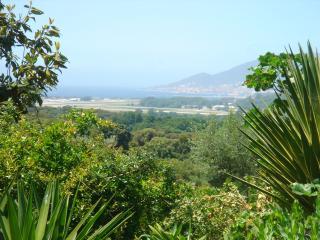 Nice Condo with A/C and Balcony - Bastelicaccia vacation rentals