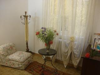 Wide apartment in the very centre of Florence - Florence vacation rentals