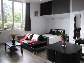 Cozy Studio with Television and Microwave - Chateauneuf-sur-Loire vacation rentals