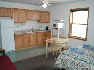 Hotel Style Room with Kitchenette, Futon and Full Bath at Three Rivers Resort in Almont (Lodge Room A) - Almont vacation rentals