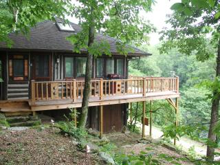 Cozy Cabin with Deck and Internet Access - Eureka Springs vacation rentals